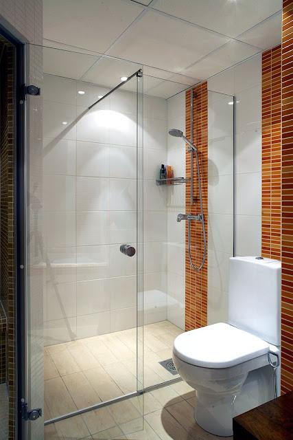 Amazing glass shower doors