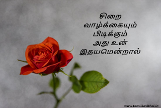 tamil love quotes in tamil