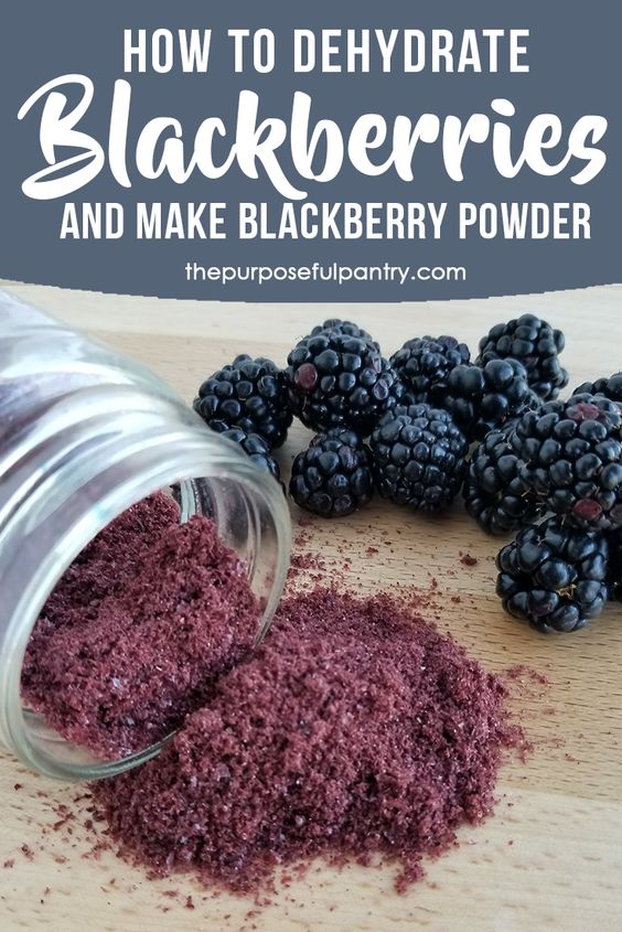 HOW TO DEHYDRATE BLACKBERRIES & MAKE BLACKBERRY POWDER