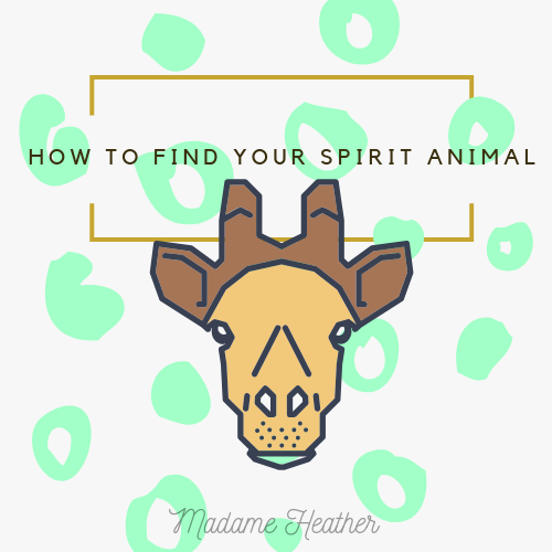 How to find your spirit animal