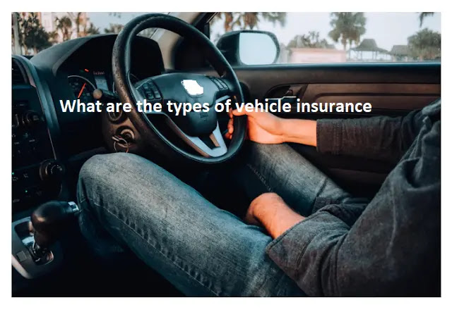 What are the types of vehicle insurance