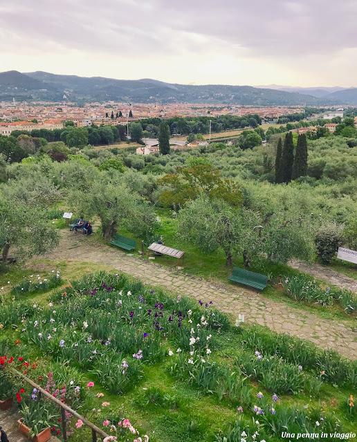 giardino dell'iris firenze foto panorama