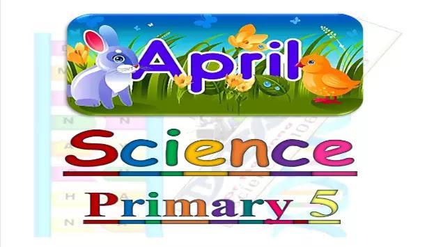 مراجعة ساينس منهج الصف الخامس الابتدائي لشهر ابريل