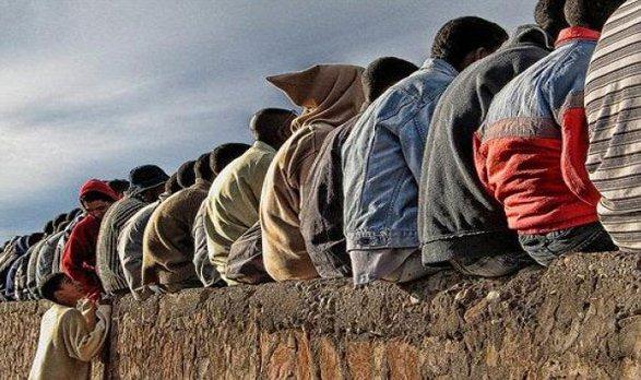 وزارة البطالة بقلم المحامي عمرو النعماني