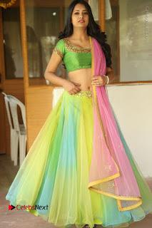 Actress Nikitha Bisht Stills in Lehenga Choli at Pochampally Ikat Art Mela Launch  0387.JPG