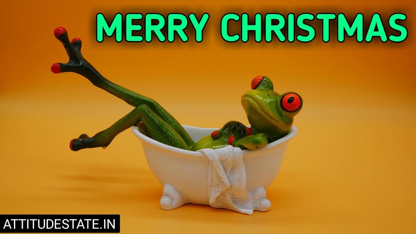 merry christmas eve funny gif