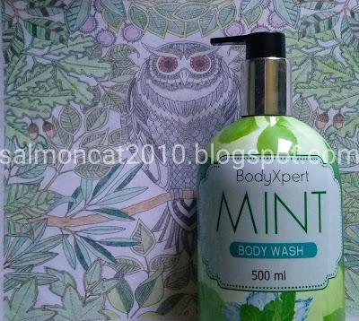 bodyxpert mint body wash