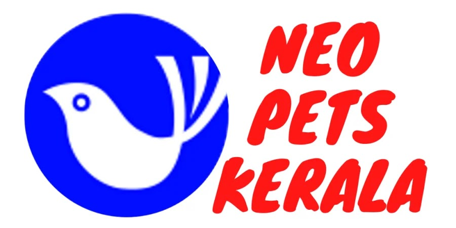 neopetskerala (നിയോ പെറ്റ്സ് കേരള)