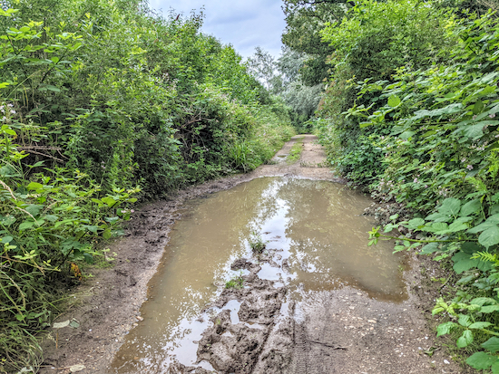 The puddle along Hertingfordbury bridleway 2