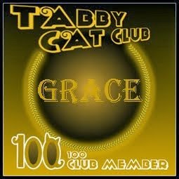 Tabby Cat 100 Club