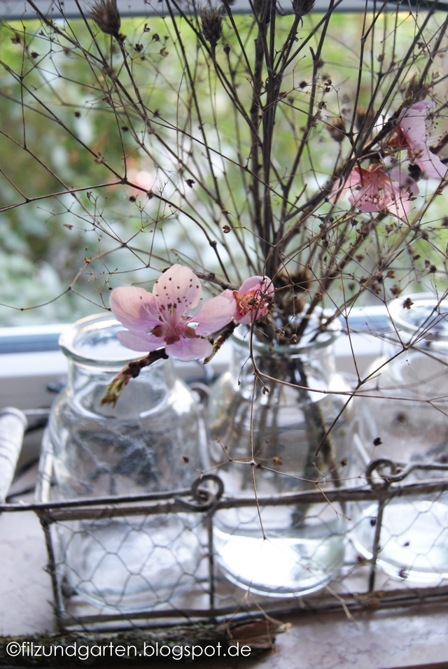 Vase mit Blütenzweigen auf der Fensterbank