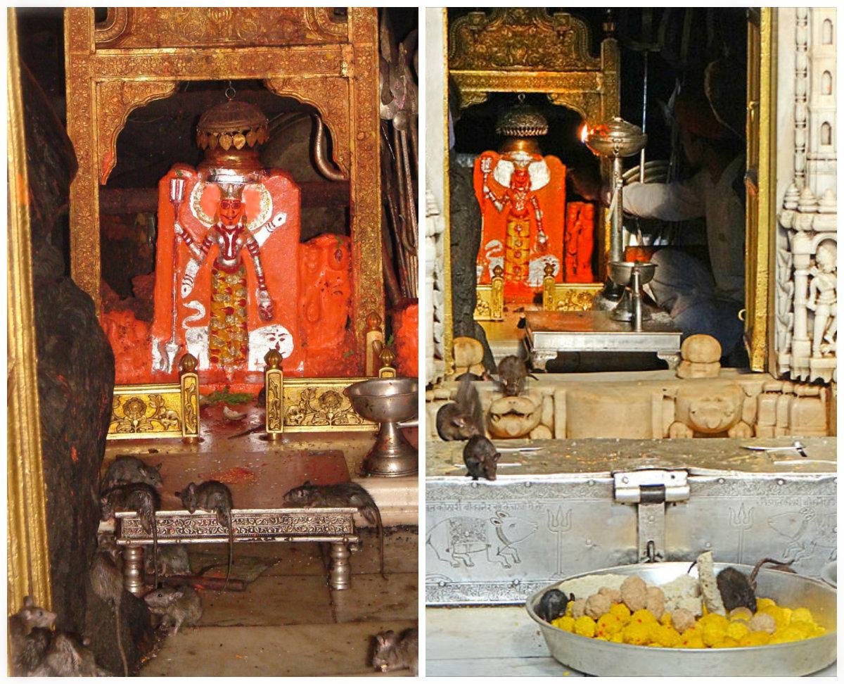 Shri Radhe Guru Maa : Jai Bola Karni Mata Ki!
