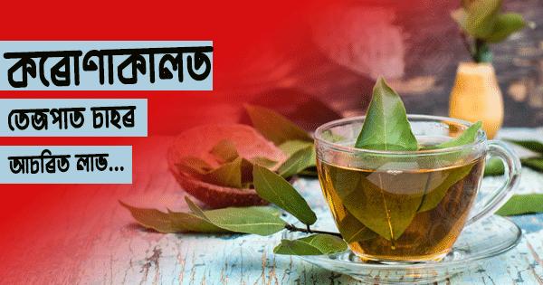 bay leaf benefits