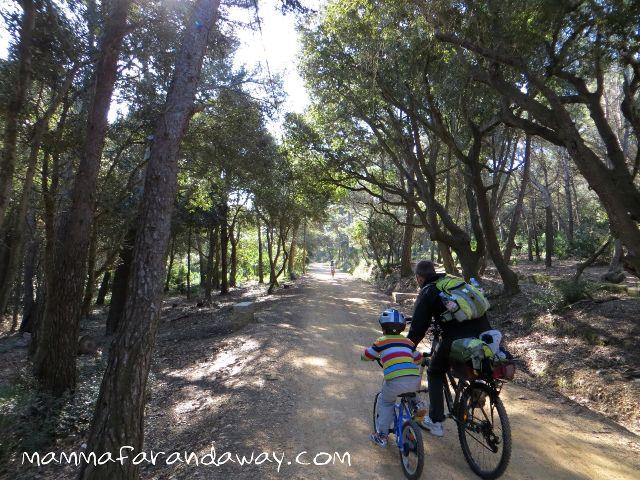 in biciclette con bambini