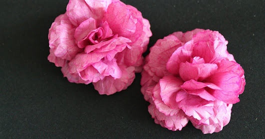 Tissue Paper Flowers and First Tutorial Videos (Re-Post)