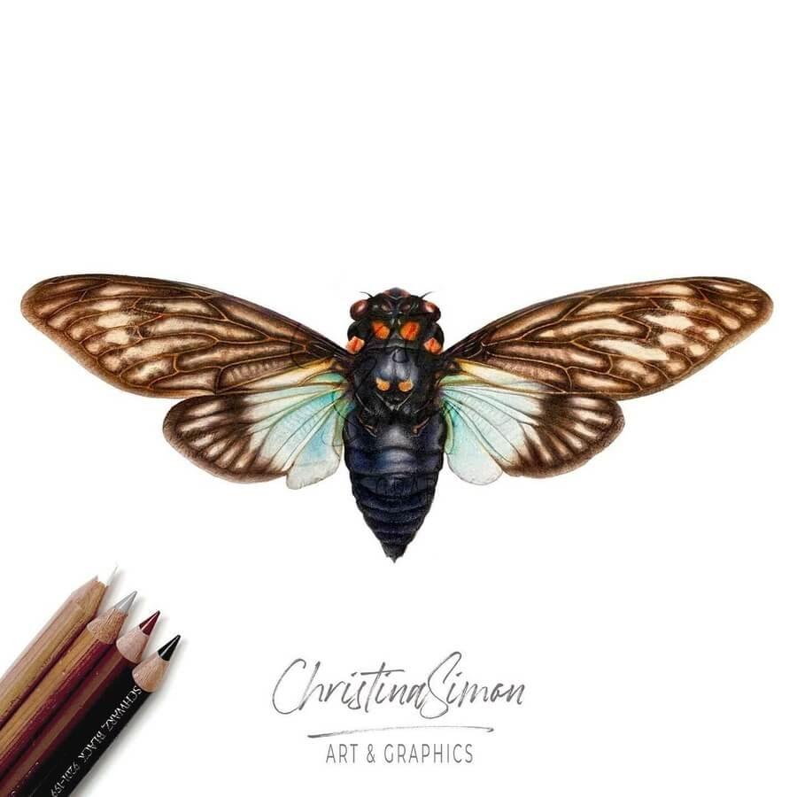 05-Moth-Cristina-Simon-www-designstack-co