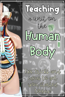 Tips, tricks, and exciting ideas to use to teach about the human body systems