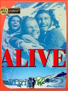 Alive (¡Viven!) (1993) HD [1080p] Latino [GoogleDrive] SXGO