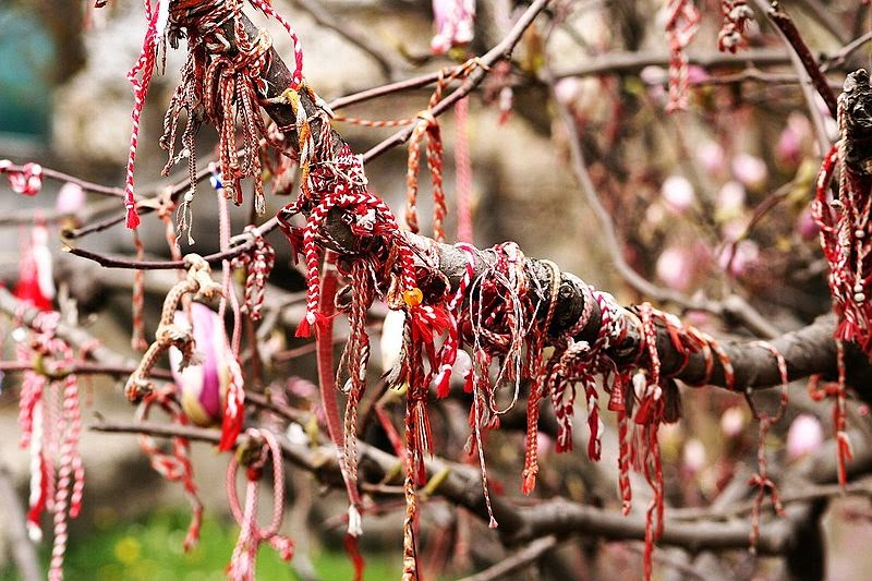 March bracelets hanging from a fruit tree.