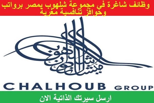 وظائف خالية في مجموعة شلهوب بمصر في مختلف التخصصات برواتب وحوافز تنافسية