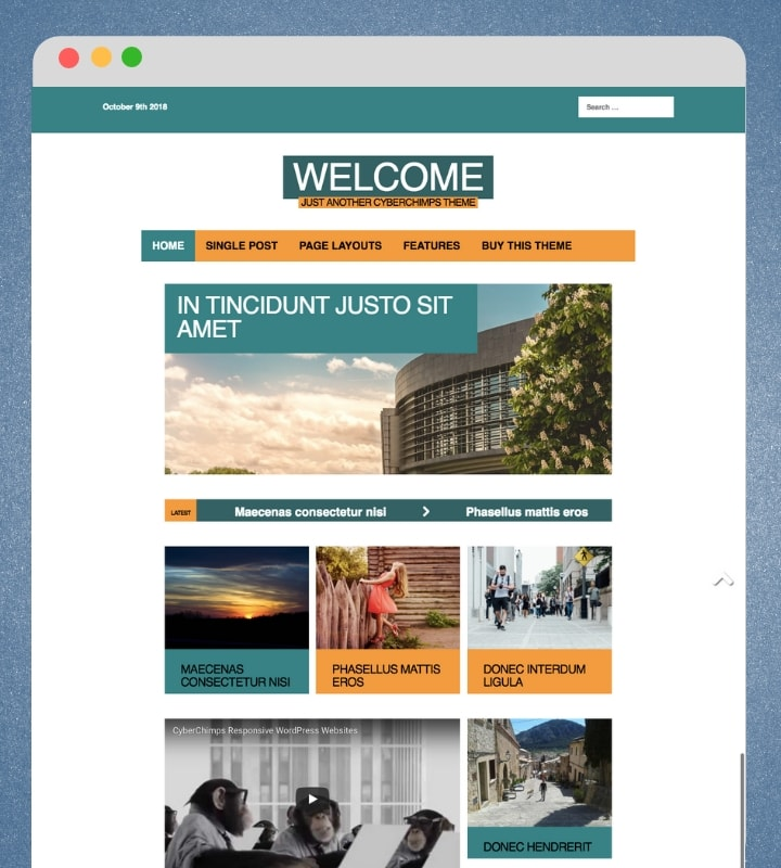 Quintessential (Magazine WordPress Theme With a Video Background)