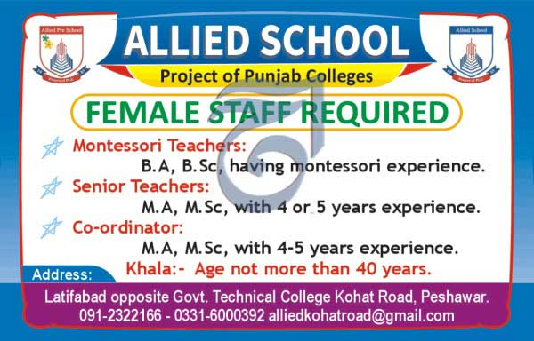 Jobs In Allied School Peshawar