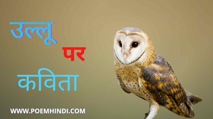 उल्लू पर कविता | Poem On Owls In Hindi