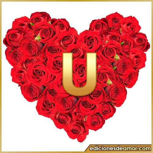 corazón de rosas con letra U