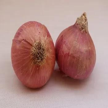 कांदे, onion vegetables name in Marathi