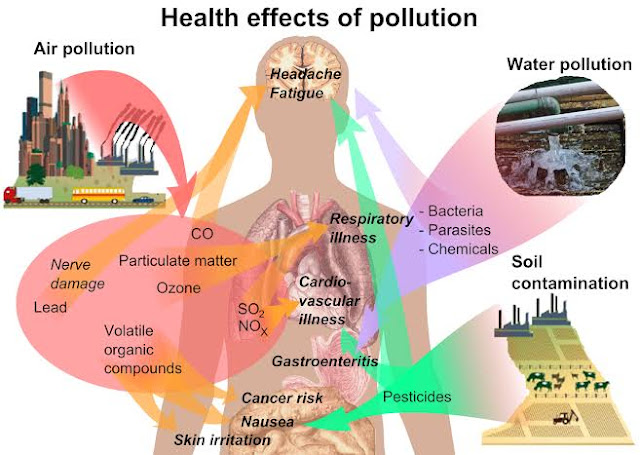 Effect of different pollutants  long human health
