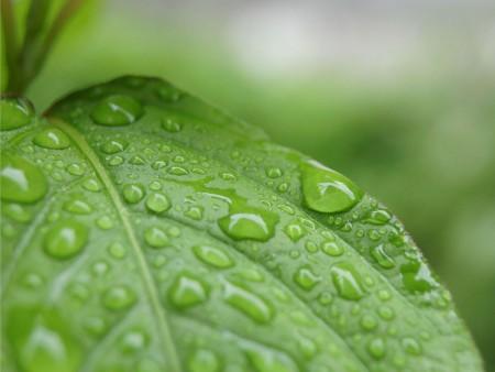 كيف تتكون حبات المطر