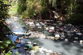 Tercemarnya Sungai Di Pesisir Watulimo Akibat Apa?