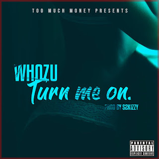 Download Mp3 Music Audio | Whozu Ft S2kizzy - Turn Me On