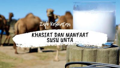 Khasiat dan Manfaat Susu Unta Bagi Kesehatan