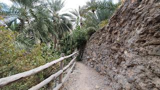 قرية العلياء ( العوابي / الرستاق )