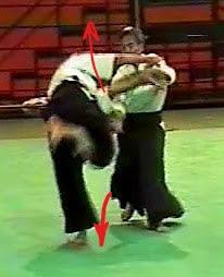 katadori menuchi udekiminage Aikido