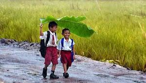 Sajak Petani Mensyukuri Hujan