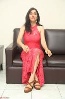 Sakshi Kakkar in Red Legsplit Sleeveless Gown at Dare movie Press meet ~  Exclusive 074.JPG