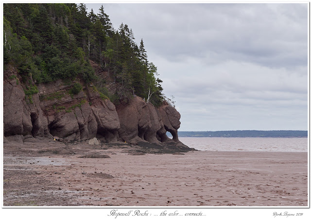 Hopewell Rocks: ... the color... connects...
