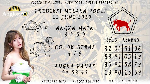 PREDIKSI MELAKA POOLS 12 JUNI 2019