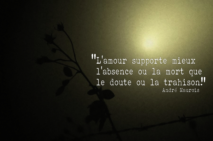 citation trahison - belle citation sur la vie et proverbe phrase