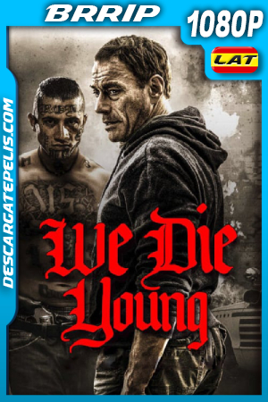 We Die Young (2019) 1080P BRRIP Latino – Ingles
