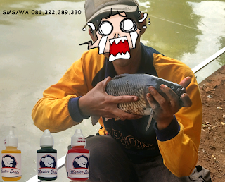 Essen Ikan Mas Subang Khusus Kilo Gebrus