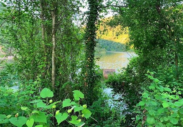 Sırapınar Barajı Kamp Alanı