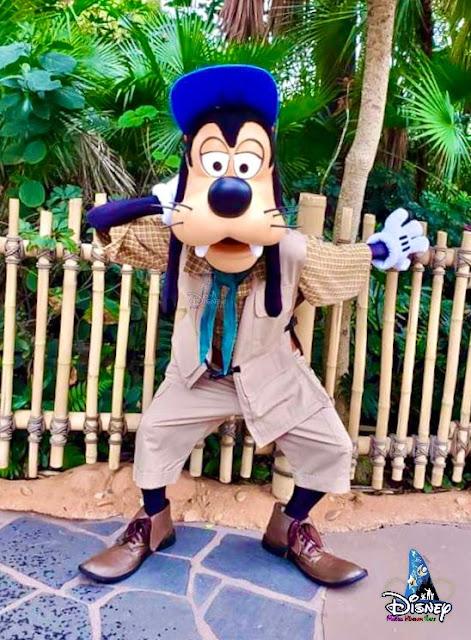 心動在奇妙瞬間探險家高飛和托托 現身探險世界自拍點, HeartFluttersWithMagic-Selfie-Spot-MeetnGreet-2021-Adventurer-Goofy-and-Terk, Tarzan, Hong Kong Disneyland,香港迪士尼樂園