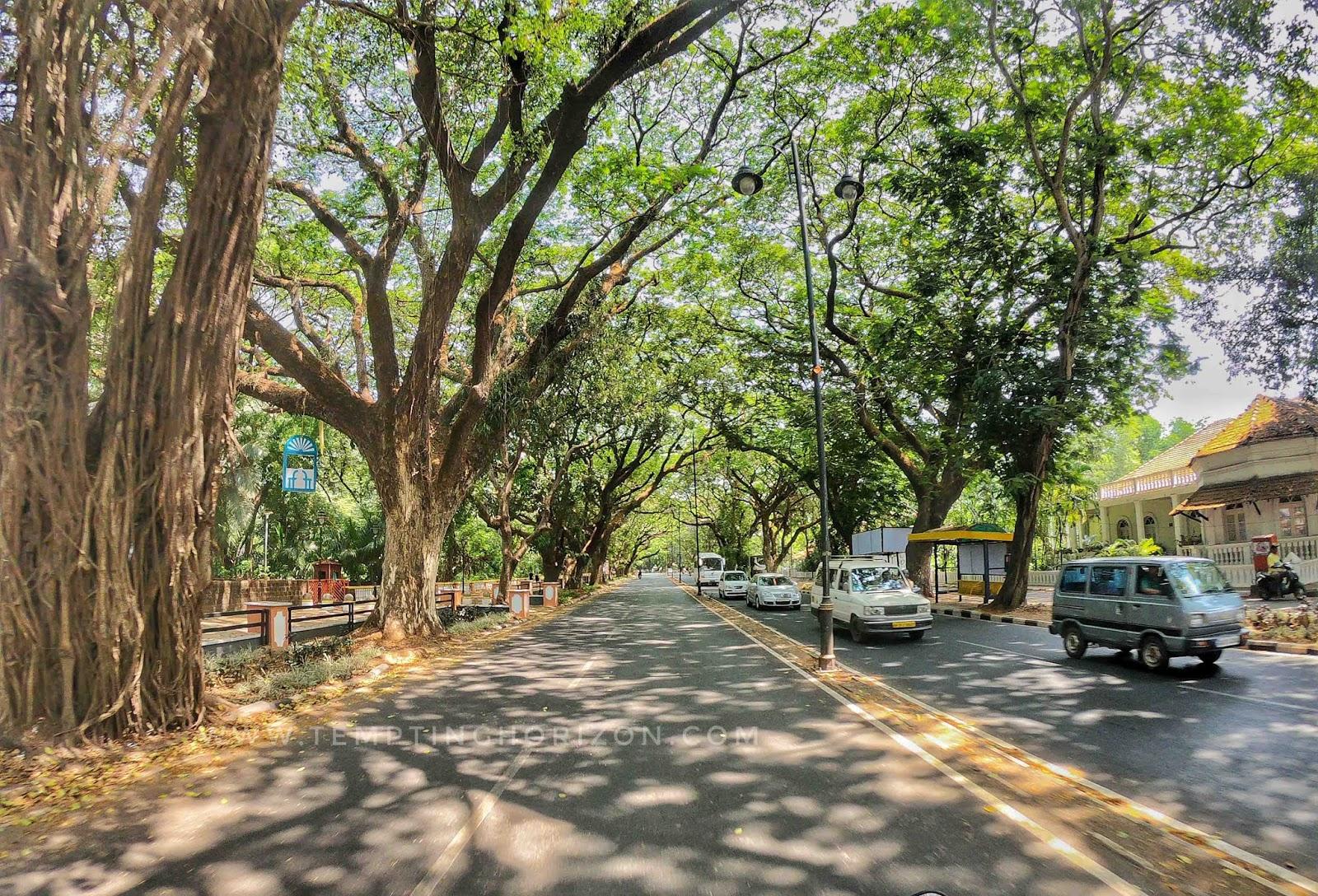 roadtrip to goa - goan roads