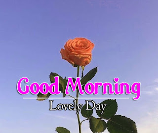 New Good Morning 4k Full HD Images Download For Daily%2B80