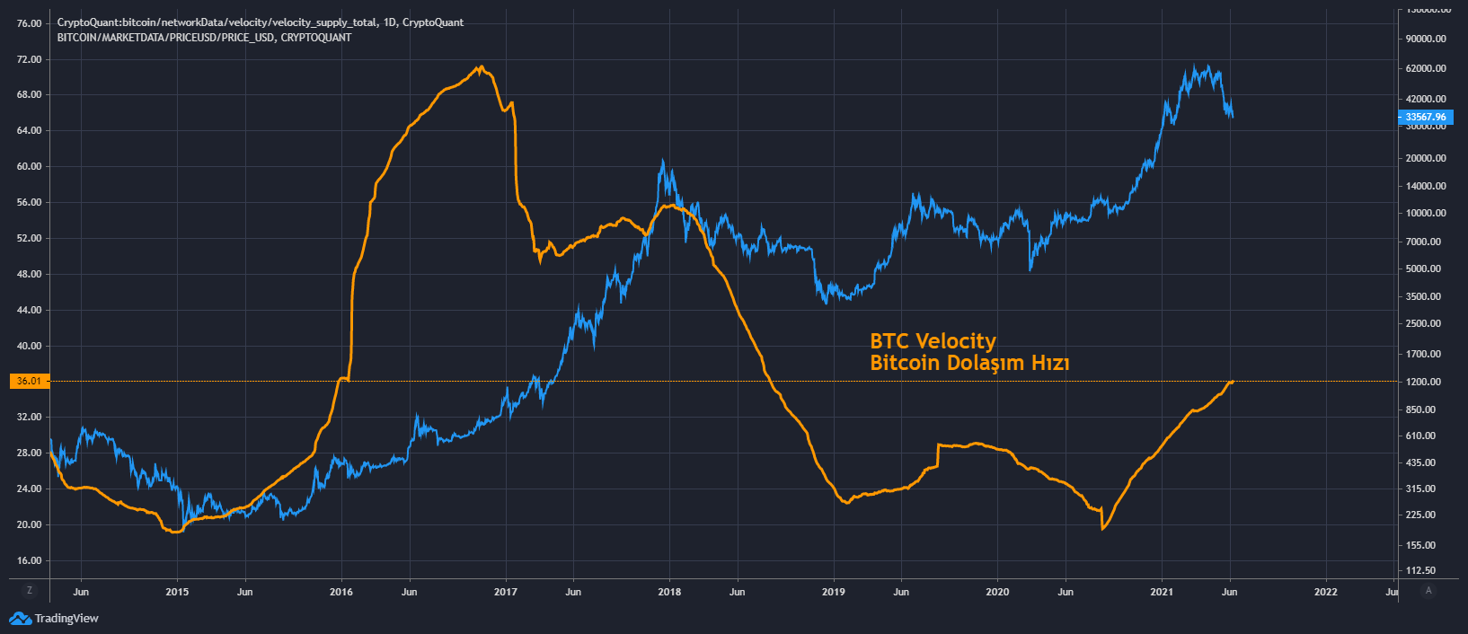 BTC Velocity