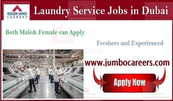 Golden Sands Laundry Jobs in Dubai for Freshers
