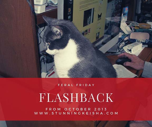 Feral Friday Flashback: Computer Games